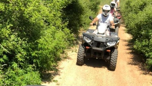 Off road quad tour