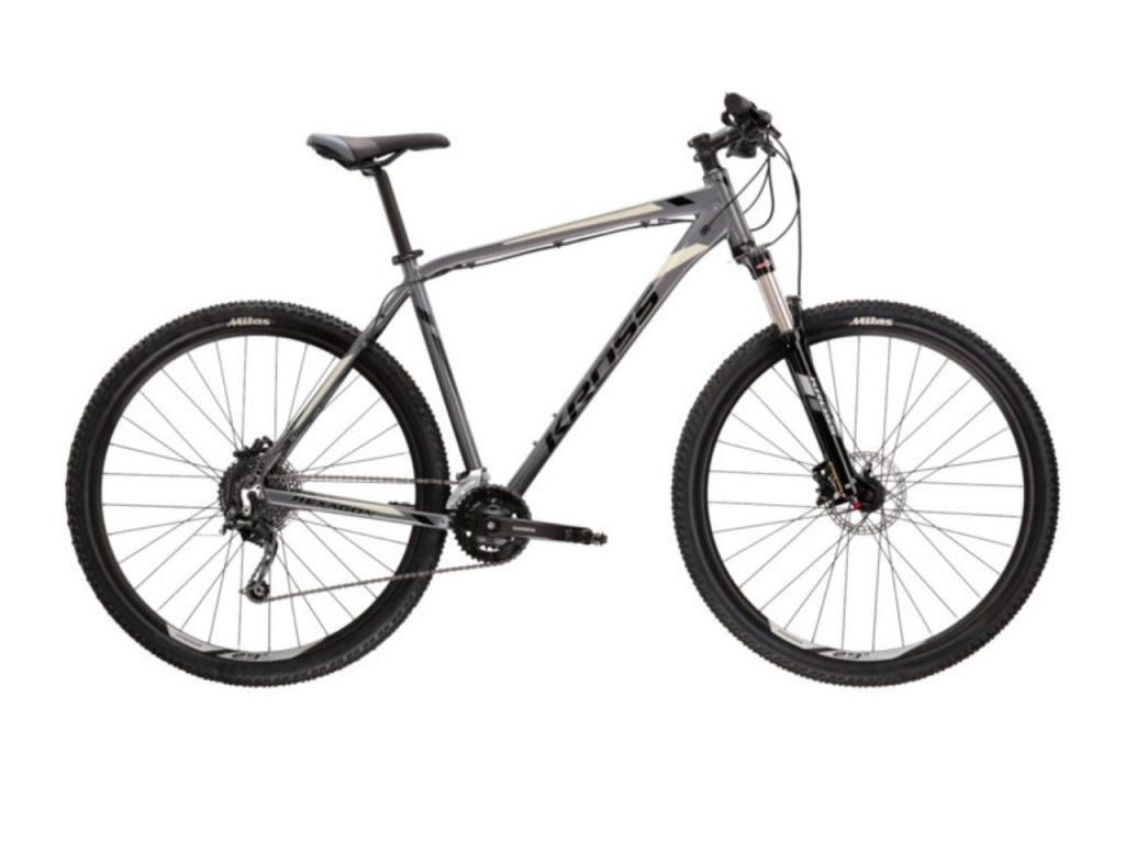 sivi brdski bicikl